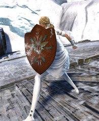gw2-winter's-shelter-shield-skin-2