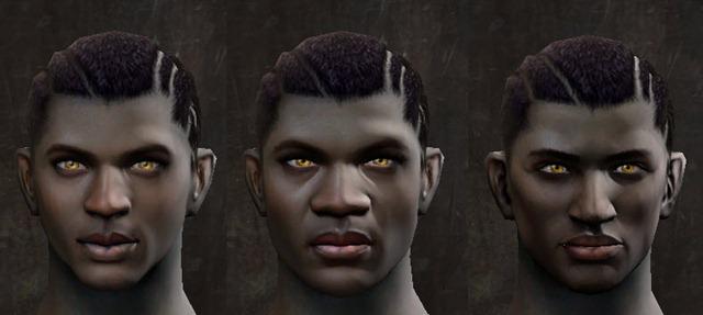 gw2-pof-faces-male-darker