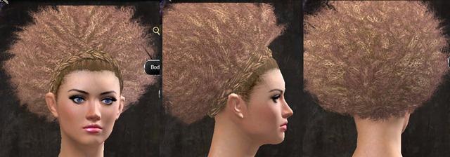 gw2-pof-hairstyles-13