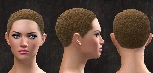 gw2-pof-hairstyles-3