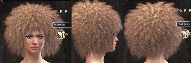 gw2-pof-hairstyles-6