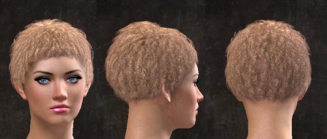 gw2-pof-hairstyles-9