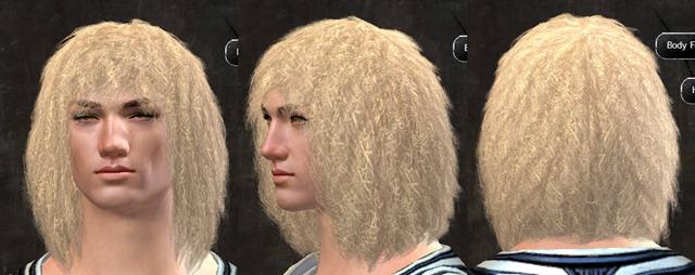 gw2-pof-hairstyles-human-male-10