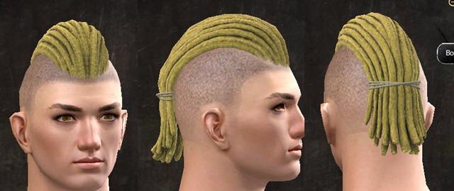 gw2-pof-hairstyles-human-male-11