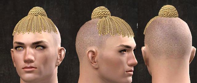 gw2-pof-hairstyles-human-male-12