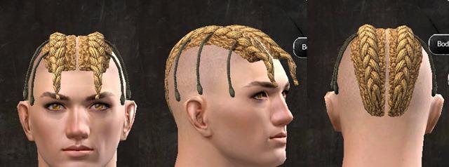 gw2-pof-hairstyles-human-male-13