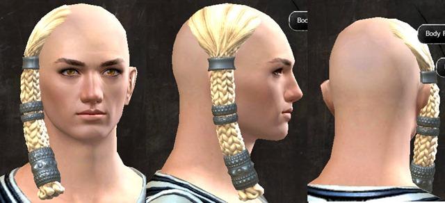 gw2-pof-hairstyles-human-male-14
