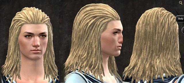 gw2-pof-hairstyles-human-male-1