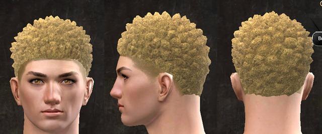 gw2-pof-hairstyles-human-male-2