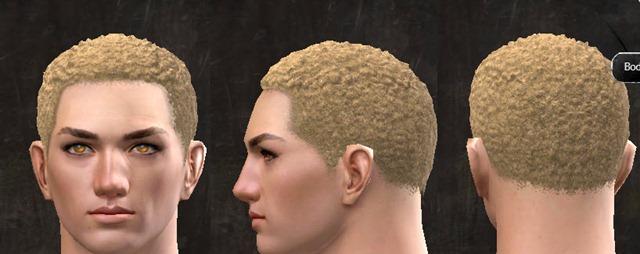 gw2-pof-hairstyles-human-male-3