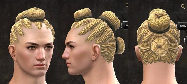 gw2-pof-hairstyles-human-male-5