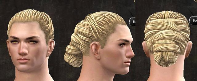 gw2-pof-hairstyles-human-male-6