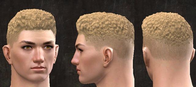 gw2-pof-hairstyles-human-male-7
