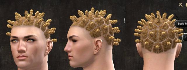 gw2-pof-hairstyles-human-male-8