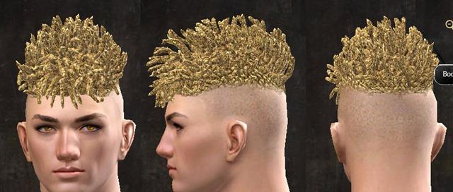 gw2-pof-hairstyles-human-male-9