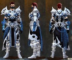 gw2-warbeast-med-armor-set-2