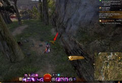 gw2-carrot-collector-achievement-guide-12