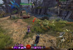 gw2-carrot-collector-achievement-guide-4