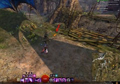 gw2-carrot-collector-achievement-guide-7