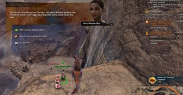 gw2-crystal-oasis-achievements-guide-8