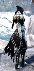 gw2-grenth's-regalia-outfit-human-female-2