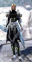 gw2-grenth's-regalia-outfit-human-female-4