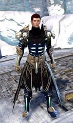 gw2-grenth's-regalia-outfit-human-male-4
