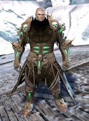 gw2-grenth's-regalia-outfit-norn-male-4