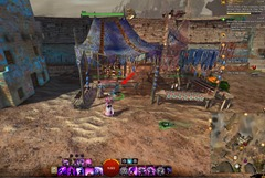 gw2-springer-backpacking-achievement-guide-22