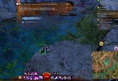 gw2-elon-riverlands-achievement-guide-43
