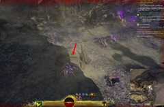 gw2-forgotten-debris-achievement-guide-12
