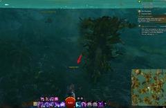 gw2-forgotten-debris-achievement-guide-42