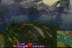 gw2-forgotten-debris-achievement-guide-47
