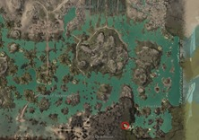 gw2-forgotten-debris-achievement-guide-48