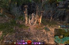 gw2-path-of-the-gods-achievement-guide-2