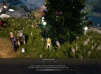 bdo-grow-a-cron-tree-event-guide-8