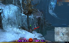 gw2-coalescence-unbridled-collection-guide-4