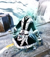 gw2-winter-monarch-outfit-female-charr-3