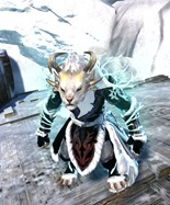 gw2-winter-monarch-outfit-female-charr-4