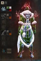 gw2-winter-monarch-outfit-male-dye-2