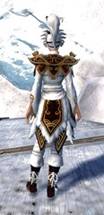gw2-imperial-guard-outfit-hfemale-3