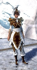 gw2-imperial-guard-outfit-hfemale