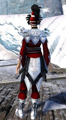 gw2-imperial-guard-outfit-norn-female-3