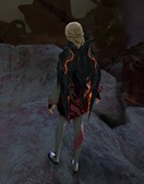 gw2-forged-backpack-and-glider-combo