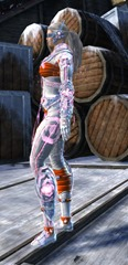 gw2-inquest-exo-suit-outfit-nornf-2