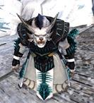 gw2-primeval-dervish-outfit-12