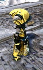 gw2-primeval-dervish-outfit-14