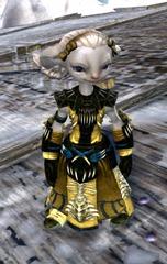 gw2-primeval-dervish-outfit-16