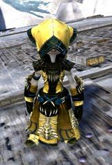 gw2-primeval-dervish-outfit-1