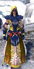 gw2-primeval-dervish-outfit-5